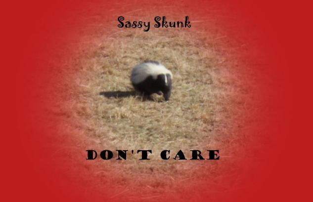 Sassy Skunk Don't Care