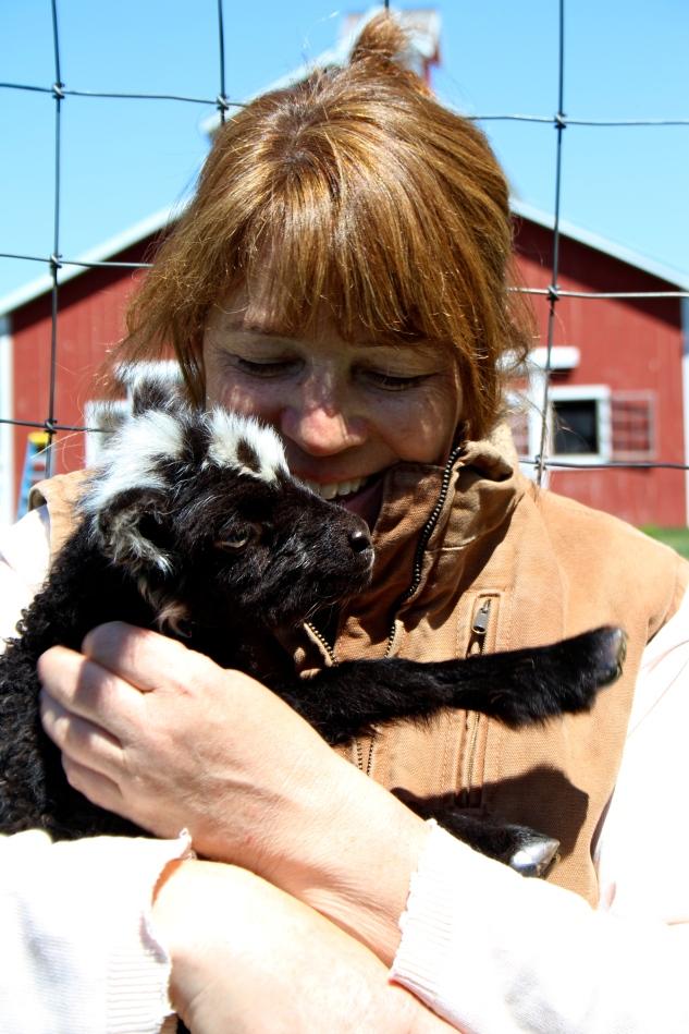 Nikki's little Shetland ewe lamb & Farmer Tam enjoying a gorgeous Vermont May day